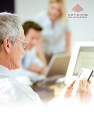 Consulting - Carolina Web Consultants
